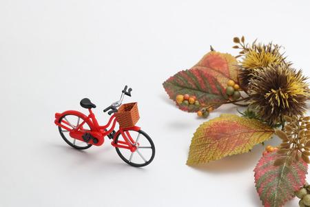 empedrado: Bicicletas, hojas de otoño, y el castaño sobre fondo blanco. Concepto de la bicicleta en otoño. Foto de archivo