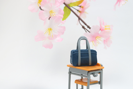 first year student: Satchel and cherry blossoms on white background. Entrance ceremony concept.