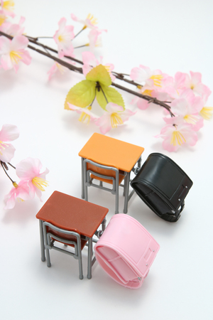 Schoolchilds rucksacks and cherry blossoms on white background. Randoseru. School ceremony concept.