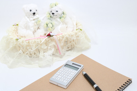 paying: Newlyweds and calculator on the white background. wedding budget concepts. Stock Photo