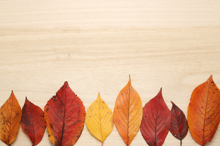 Fallen leaves on wooden table. Thanksgiving day concept. Autumn concept.