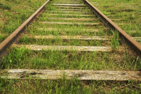Old railroad stretching away overgrown with green grass