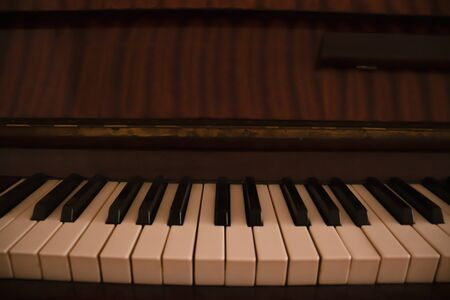 Piano musical instrument with white and black keys