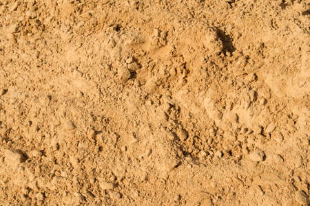 Fine yellow sand texture for a different kind of design 免版税图像