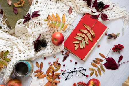 Pile of autumn leaves, pine cones nuts over white background. collection beautiful colorful leaves border from autumn elements. top view, copy space. Bright Pretty Fall Display of Colorful Ash Leaves Stock Photo
