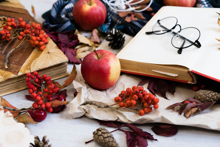 Cozy winter still life: cup of hot coffee and opened book. Cup of tea with open book bunch of red rowan. Back to school. Autumn, fall leaves, Flat lay, top view. sunday relax and still life concept.
