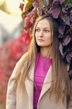 young beautiful woman in a pink knitted sweater looks to the side, against the background of wild grapes. Autumn portrait. Stock fotó