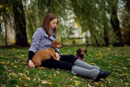 Smiling lady taking free time with her dog. Woman relaxing in the nature with her little dog. Scratching her back. Dog licking her owner nose.