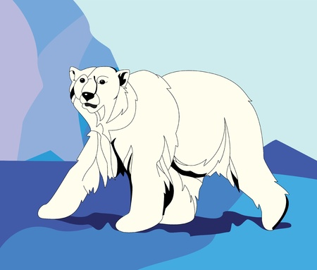 wildlife reserve: Polar bear among ice mountain