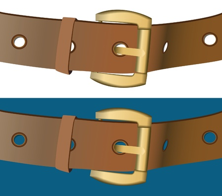 belt buckle: The two wide belts on color background