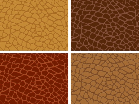 The four skin texture set Vector