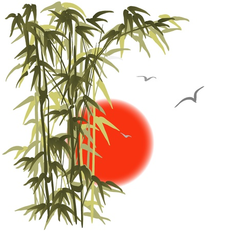 bamboo leaves: Green bamboo on sunset background Illustration