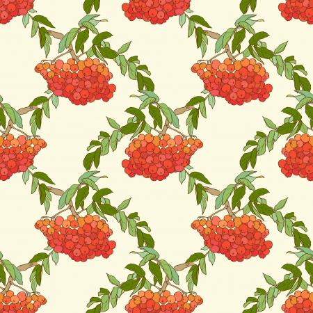 romanticist: Autumnal pattern with bright, juicy berries of mountain ash and green leaves