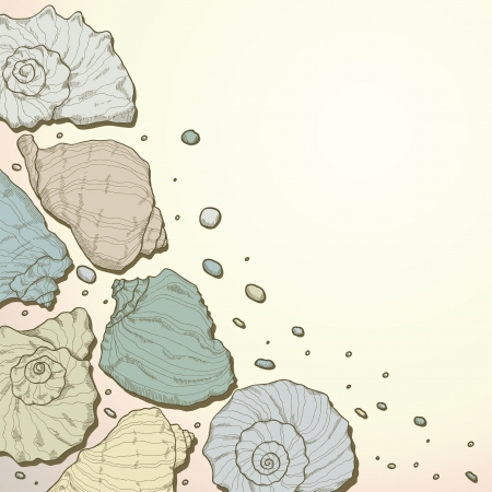 Beach background with seashells  Card Vector