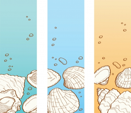 Summer background  Banner set with seashell and stones Vector