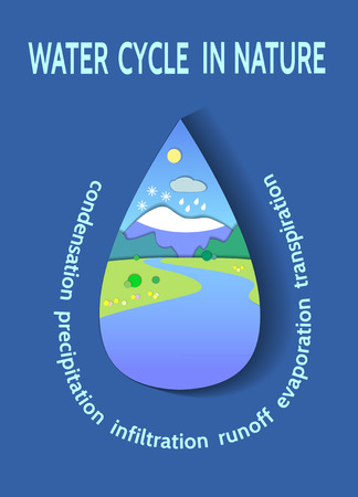 transpiration: Schematic representation of the global water cycle in nature. Illustration of the Hydrologic cycle. Concept Flat Landscape Template Illustration. Paper cut style