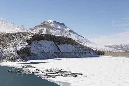 frozen lake: Fish farm in frozen lake ,Eastern Anatolia