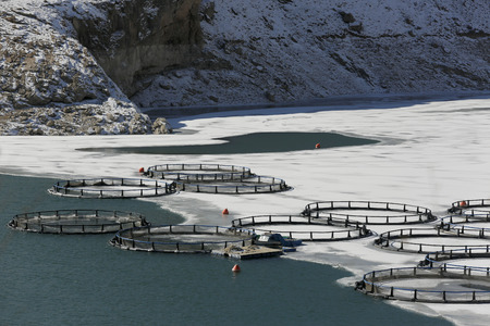 tangent: Fish farm in frozen lake ,Eastern Anatolia
