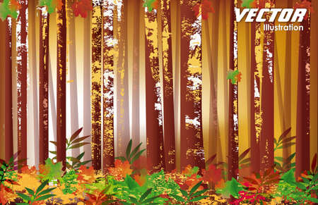 Forest Flora and Fauna Stock Vector - 14671082