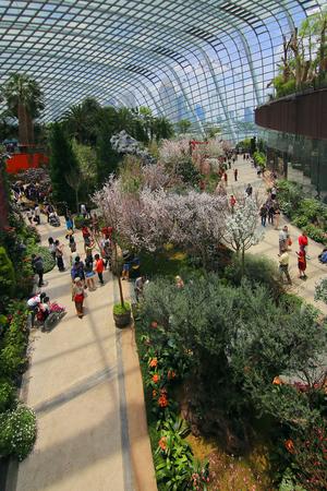 Sakura garden in Gardens by the bay