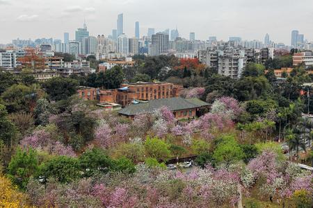 Guangzhou city scenery Editorial