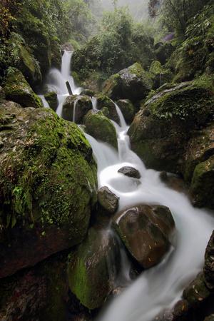 Chengdu Qingcheng Houshan natural scenery