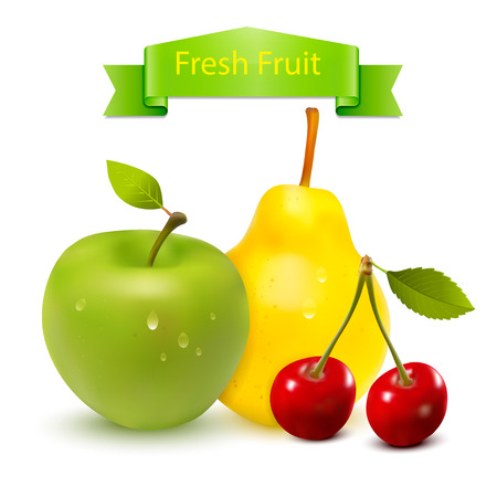 Fresh Fruit Vector Vector