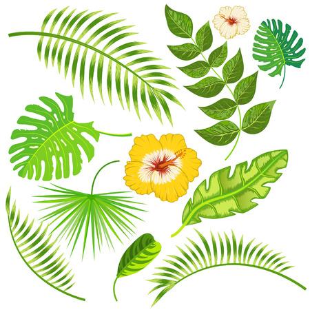 Tropische bladeren en bloemen vector Stock Illustratie