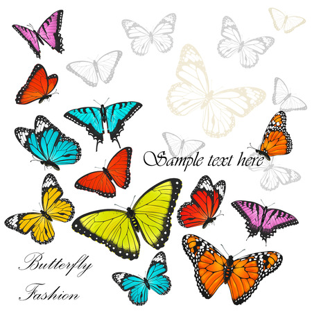 white butterfly: Background with colorful butterflies vector illustration