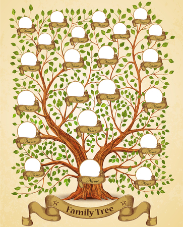 Family Tree template vintage vector illustration Çizim
