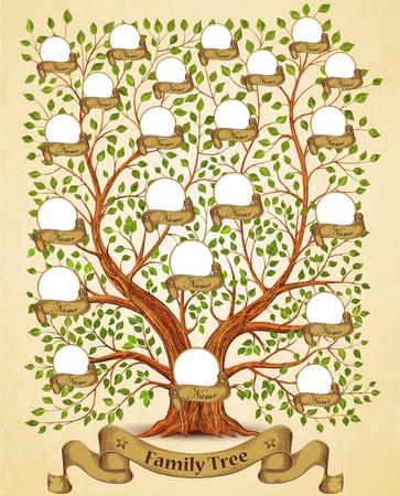 arbol geneal�gico: Plantilla del �rbol de la familia de la ilustraci�n del vector de la vendimia