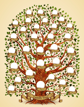 Family Tree template vintage vector illustration Illustration