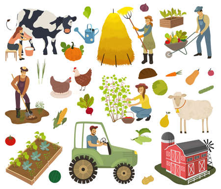 Farmers do agricultural work, planting, gathering crops. Woman milks a cow and picking berries. Agricultural workers. Farm animals, fruits and vegetables isolated vector illustration.