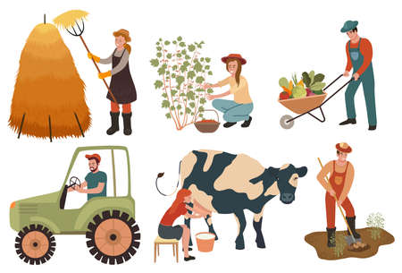 Agricultural workers. Farmers do agricultural work, planting and gathering crops. Woman milks a cow and picking berries. Cartoon characters doing farming job. Vector illustration