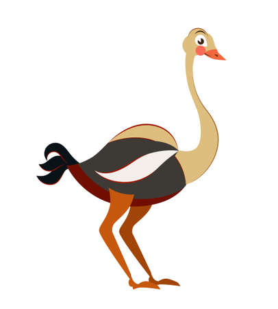 Cute ostrich in flat isolated on white background. Childish style vector illustration. African animal for abc book. Ilustrace