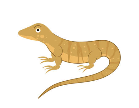 Cartoon monitor lizard in flat style for abc book. Vector illustration