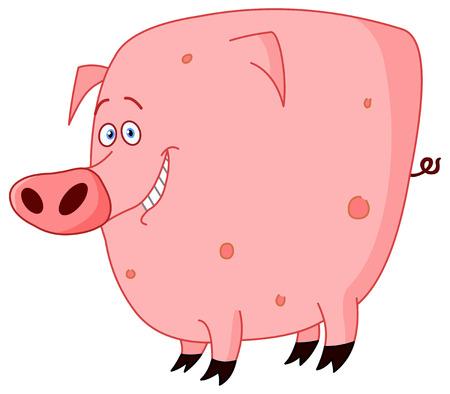 sows: cute pig