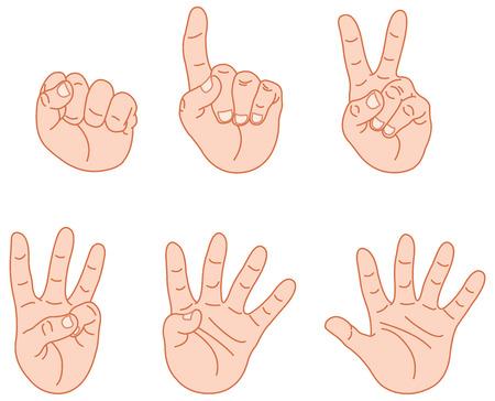 Contando las manos  Ilustración de vector