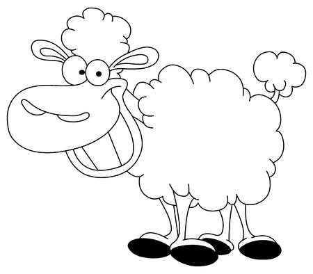 oveja: Contorno de ovejas
