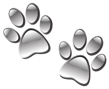 foot prints: Glassy paw prints