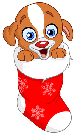 Cute puppy in Christmas sock Vector