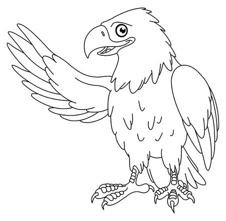 hawks: Delineato American bald eagle Vettoriali