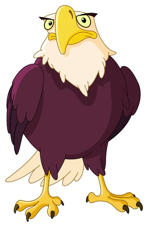 prey: American bald eagle