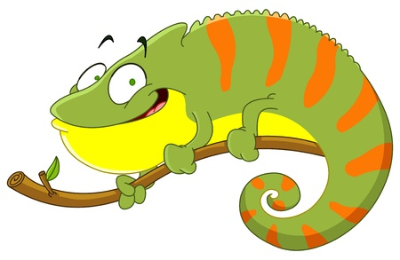 chameleon lizard: Chameleon cartoon Illustration