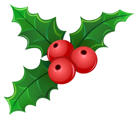 holly leaves: Christmas holly berry mistletoe