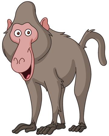 baboon: Smiling baboon
