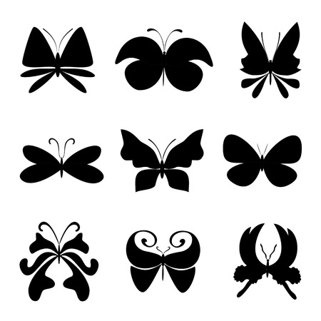 butterfly isolated: Butterfly collage isolated on white Illustration