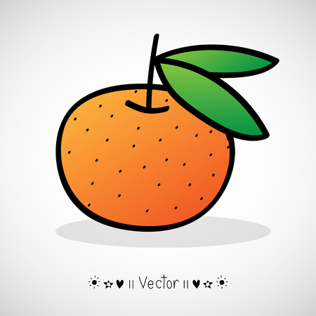 tangerine: Vector hand drawn tangerine with green leaves