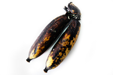 Rot Banana, Close Up A Molder Rotten Banana Isolated on White Background Great For Any Use.