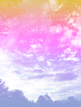 Abstract Beautiful Clouds Pastel Colored Gradient with Tree. A Soft Sky Nature Outdoor Background Great for Any Use. Standard-Bild